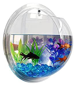 fish bubble deluxe acrylic wall mounted fish. Black Bedroom Furniture Sets. Home Design Ideas