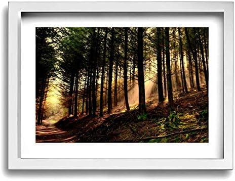 XINGAKA パネル絵 森 日 木 ソファの背景絵画 キャンバス絵画 部屋飾り お祝いやプレゼントに 木枠付きの完成品 絵画