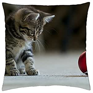 Adorable Cat - Throw Pillow Cover Case (18