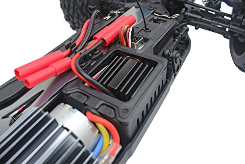 Redcat Racing Blackout XTE 1/10 Scale Electric Monster Truck with Waterproof Electronics, Red by Redcat Racing (Image #10)