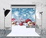 LB 5x7ft Xmas Decor Poly Fabric Merry Christmas Photo Backdrops Customized Studio Photography Backdrop Background Studio Props SDX288