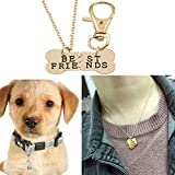 4EAELove Lettering Heart Charm Love Dog Necklace And Collar Dog-Human Jewelry Dog Lover Gifts Set of 2pcs (Gold 2)
