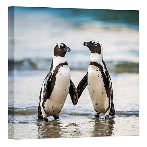 "- Modern Wild Animal Painting Canvas Prints African Penguin On The Sandy Beach Picture Wall Art for Home Decor Artwork 24""x24"""