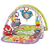 Amazon Price History for:Fisher-Price 3-in-1 Musical Activity Gym