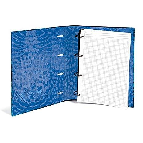 Busquets - Carpeta anillas recambio becool azul: Amazon.es ...