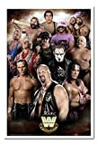 WWE Legends Poster White Framed & Satin Matt Laminated - 96.5 x 66 cms (Approx 38 x 26 inches)
