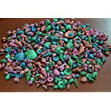 1200+ Pcs Assort Baby Mixed Dyed Multi-Colored Sea Shell Beach Decor Craft 1/2 lb