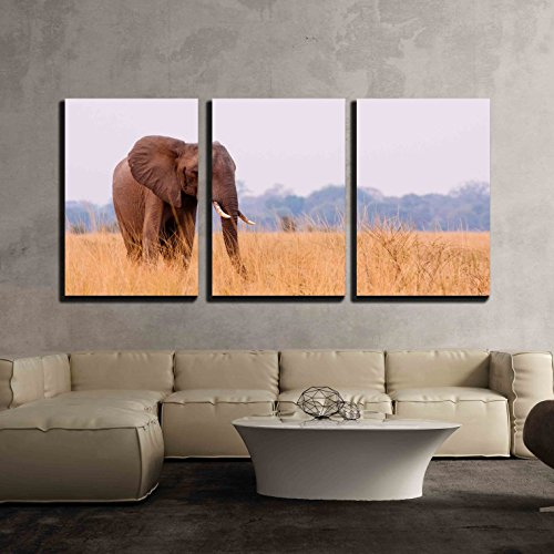 "Wall26 - 3 Piece Canvas Wall Art - African Elephant Feeding in a Savannah Flood Plain - Modern Home Decor Stretched and Framed Ready to Hang - 24""x36\""x3 Panels"