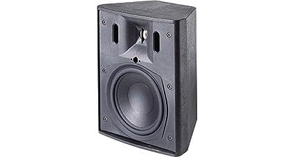 Amazon com: JBL Control 25T Indoor/Outdoor Background
