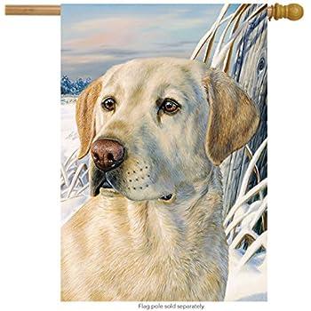 Let it snow lab house flag labrador retriever for Dog house for labrador retriever