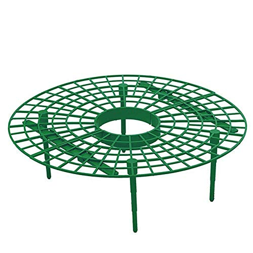 (Stand Flower - 5pcs Removable Frame Strawberry Growing Improve Harvest Circle Plastic Easy Install Support Rack - Pergola Support Plant Flower Plant Pot Plant Fence Garden Tool Garden Pla)