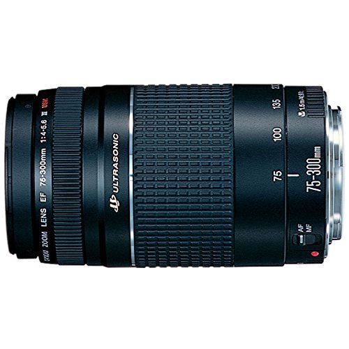 canon-ef-75-300mm-f-4-56-iii-usm-telephoto-zoom-lens-for-canon-slr-cameras