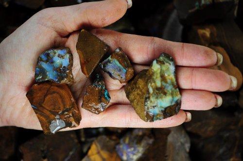 Fantasia Materials 125 Cts Boulder Opal Rough In Matrix