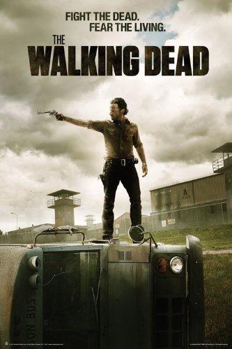 Resultado de imagen para the walking dead poster