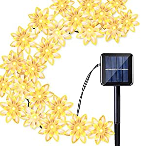 Qedertek Solar String Lights Lotus Flower, 19ft 30 LED Waterproof Decoration Lighting for Indoor/Outdoor, Patio, Lawn, Garden, Christmas, and Holiday Festivals (Warm White)
