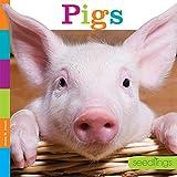 Seedlings: Pigs