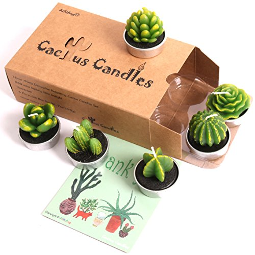 AiXiAng Handmade Delicate Non-spilling Succulent Cactus Candles for Birthday Party Wedding Spa Home Decoration