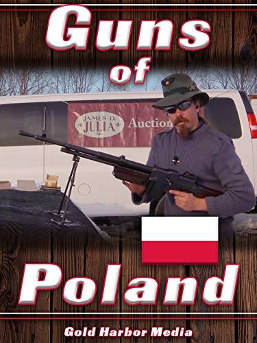 Guns of Poland