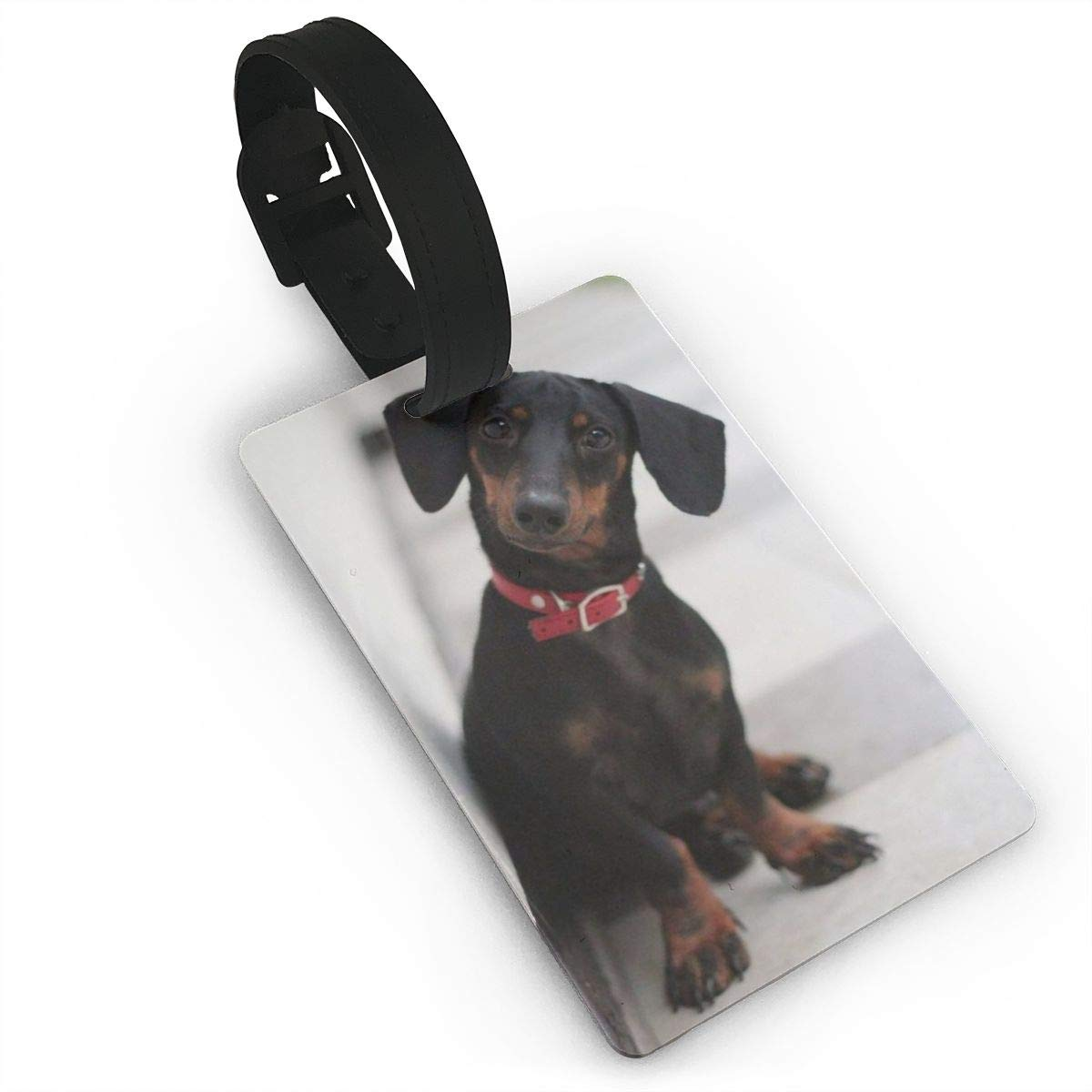 2 Pack Luggage Tags Dachshund Wiener Dog Travel Tags For Travel Bag Suitcase Accessories
