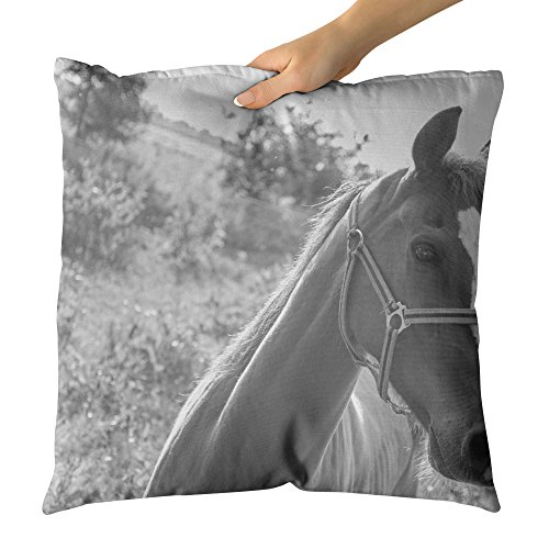 Halter Pillow (Westlake Art - Horse Halter - Decorative Throw Pillow Cushion - Picture Photography Artwork Home Decor Living Room - 20x20 Inch)