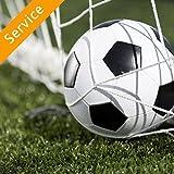 Sports Net Assembly