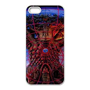 Custom Alex Grey Artistic Famous Painting Apple Iphone 5 and 5s Hard Case Cover phone Cases Covers
