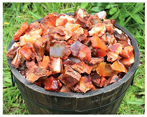- 1 Lb Natural Rough Carnelian from Madagascar WIS