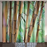 SOCOMIMI Nature Decor Curtains bamboo forest background shallow dof For Sale