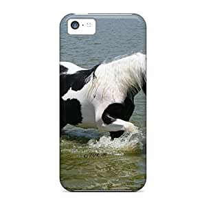 DaMMeke Scratch-free Phone Case For Iphone 5c- Retail Packaging - Acapella