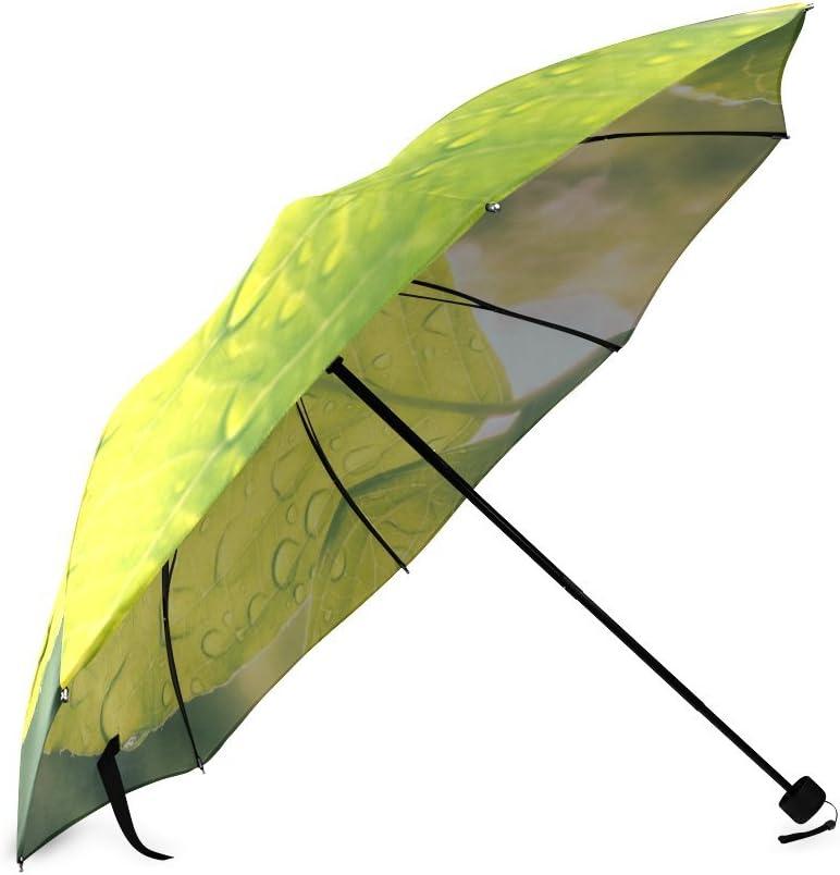 Beautytool Custom Leaves And Droplets Foldable Umbrella Sun Rain Anti-Uv