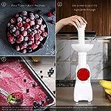 La Reveuse Frozen Dessert Maker, Great for Making