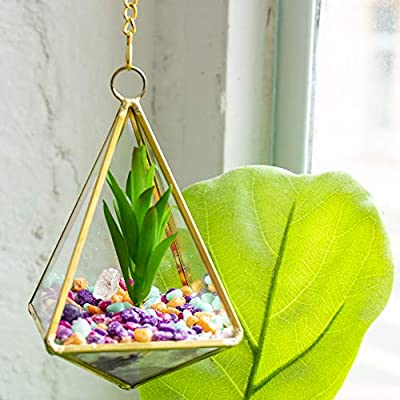 STMT DIY Crystal Terrarium by Horizon Group USA, Make Your Own Hanging Garden. 1 Glass Terrarium, 2 Gemstones, 1 Faux Plant, Colored Sand, Colored Rocks & Essential Oils Included: Toys & Games