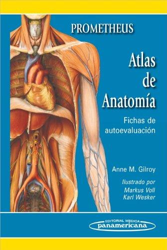 Descargar Libro Atlas De Anatomía: Fichas De Autoevaluación Anne Gilroy Prometheus