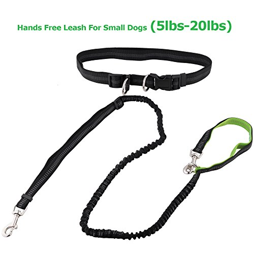 Roysili Tiny Small Pet Hands Free Dog Leash, Premium Dual Handle Running Dog Leash, Lightweight Reflective Bungee Dog Leash for Mini Dogs