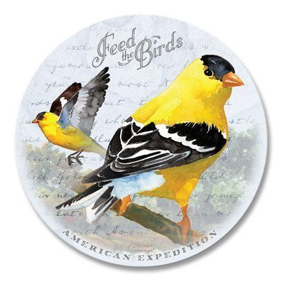(Vintage Bird Series Absorbent Stone Coaster Set with Wooden Butcher Block Holder (Goldfinch Watercolor) by American Expedition)
