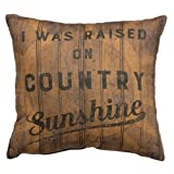 Cheap Primitives by Kathy Decorative Country Sunshine Throw Pillow, 14-Inch Square