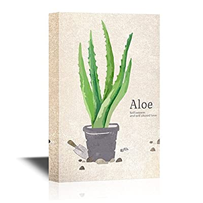 Painting Style Aloe in a Pot, With a Professional Touch, Astonishing Work of Art