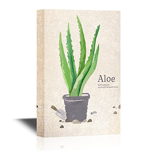 Painting Style Aloe in a Pot