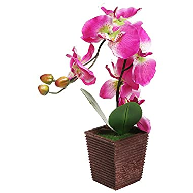 Decorative Synthetic Purple Silk Artificial Phalaenopsis Moth Orchid Flower w/ Plant Stand - MyGift