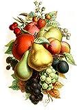 """Waterslide Decals (4pcs 2.5""""x3.5""""each) Mixed Fruit FLONZ 0746 Vintage Fruit"""