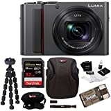 PANASONIC LUMIX ZS200 4K Camera 15X LEICA DC Vario-Elmar Lens DC-ZS200K (USA Silver) Essentials Bundle