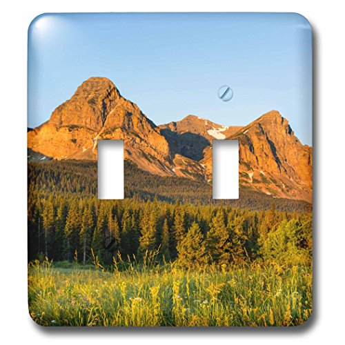 Danita Delimont   Glacier National Park   Wildflowers  Cut Bank Valley Of Glacier National Park  Montana   Light Switch Covers   Double Toggle Switch  Lsp 231076 2
