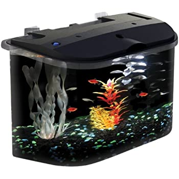 API Panaview Aquarium Kit with LED Lighting and Power Filter, 5-Gallon