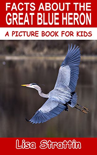 Facts About The Great Blue Heron (A Picture Book For Kids 71)