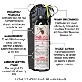 9.2 oz Bear Spray w/ Belt Holster