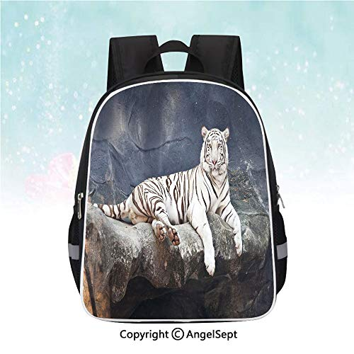 (School Student Backpack,Albino Cat Sitting on Rock Sublime Nature Marvelous Animals Endangered Species,13