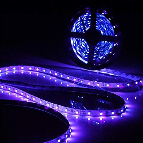 Ultraviolet Led Rope Light in US - 8