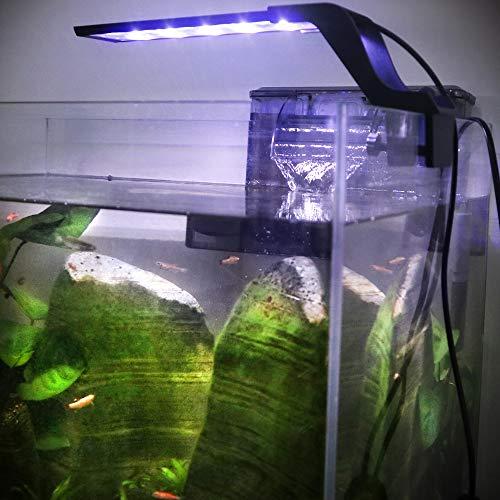 WOTERZI LED Aquarium Light Clip on Fish Tank Light with Adjustable Bracket for 10 - 18 Inch Freshwater Fish Tank, White and Blue LEDs