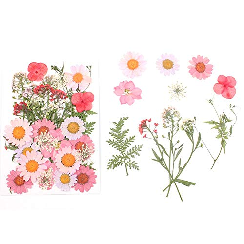 Pressed Flower Sticker - Cheng-store Dried Flowers Pink Pressed Embossed Flower fo Face Decoration, Nail Sticker Art, Body Decor Party Supplies DIY with Material Package