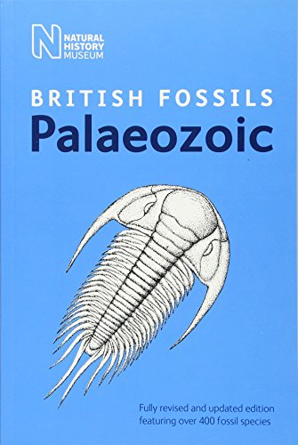 British Palaeozoic Fossils (British Fossils)
